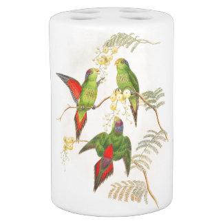 Goulds Lorikeet Parrot Birds Bath Set
