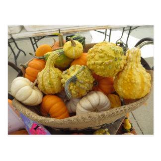 Gourd Basket Postcard