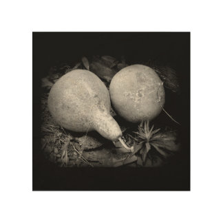 """""""GOURDS"""" 8 x 8 RUSTIC IMAGE ON WOOD Wood Canvases"""