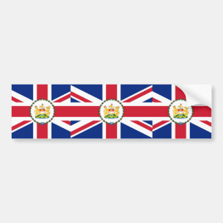 Governor Of Hong Kong, China flag Bumper Sticker