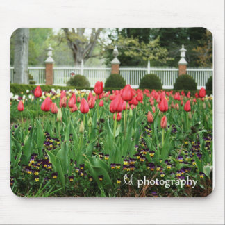 Governor's Tulips WM Mouse Mat