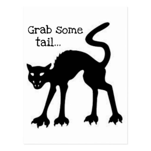 GRAB SOME TAIL...HALLOWEEN BLACK CAT PRINT POST CARDS