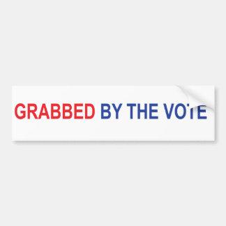 Grabbed by the Vote Bumper Sticker