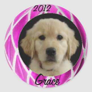 Grace 2012 Sticker Sheet