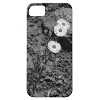 graceful black and white flower case iPhone 5 cases