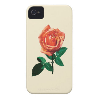 Graceful Orange Rose iPhone 4 Covers
