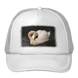 Graceful Swan  Baseball Hat