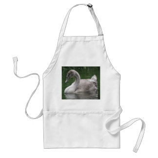 Graceful Swan on the Water Apron