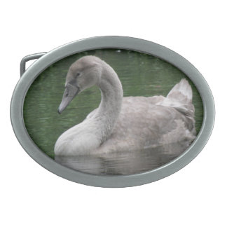 Graceful Swan on the Water Belt Buckle
