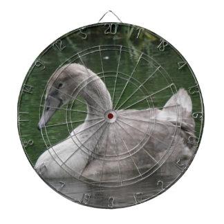 Graceful Swan on the Water Dart Board