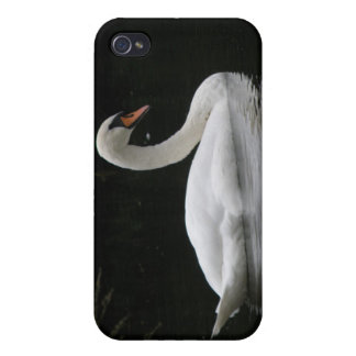 Graceful White Swan  Case For The iPhone 4
