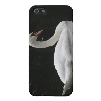 Graceful White Swan  Cover For iPhone 5/5S