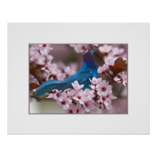 Grackle and Crabapple Blossoms Posters
