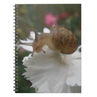 Graden Snail and White Carnation Notebook
