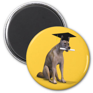 Graduate Coyote 6 Cm Round Magnet