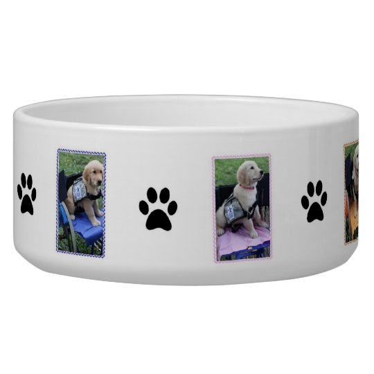 Graduation Bowl Pet Bowl
