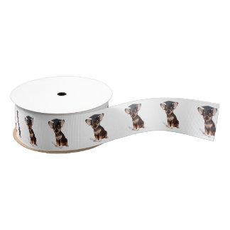 Graduation Chihuahua Dog grosgrain ribbon