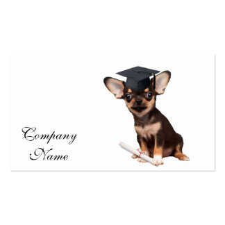 Graduation Chihuahua dog Pack Of Standard Business Cards