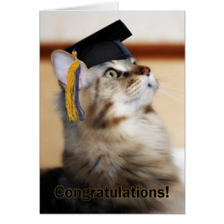 Graduation Congratulations Cat Wearing Mortarboard Greeting Card
