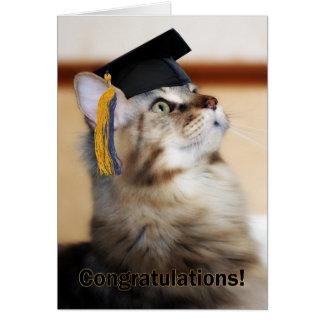 Graduation Congratulations Cat Wearing Mortarboard Greeting Card