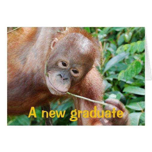 Graduation Humor Greeting Cards