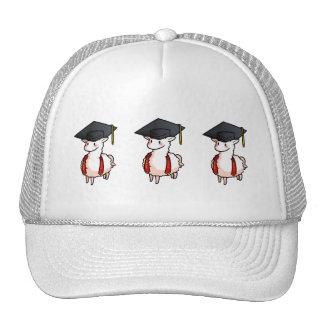 Graduation Llama Cap