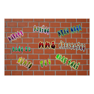 Graffiti Martial Arts Lab Poster