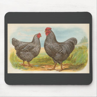 Graham - Barred Plymouth Rocks Chickens Mouse Pad