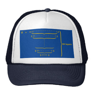 """GRAHAM'S NUMBER"" CAP"