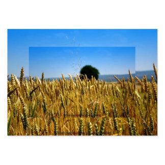 Grain Business Card Template
