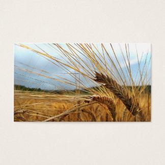 Grain Emporium