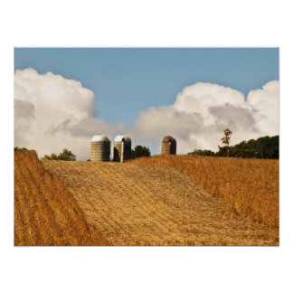 Grain Harvest Print