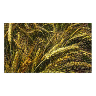 Grain Market Pack Of Standard Business Cards