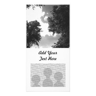 Grainy Black and White image of Trees and Sky Personalized Photo Card