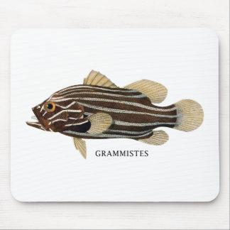 GRAMMISTES MOUSE PAD