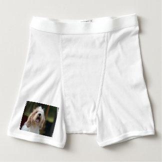 Grand Basset Dog Boxer Briefs