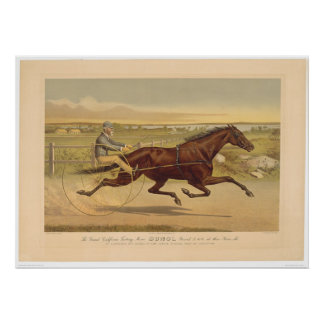 Grand California Trotting Mare Sunol (0652A) Poster