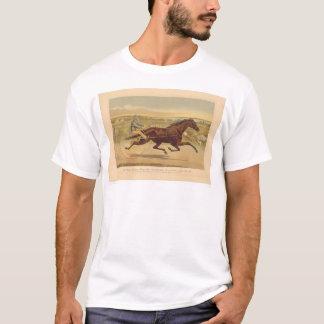 Grand California Trotting Mare Sunol (0652A) T-Shirt