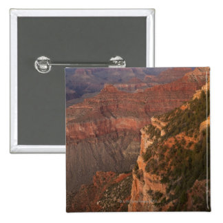 Grand Canyon, Arizona 15 Cm Square Badge