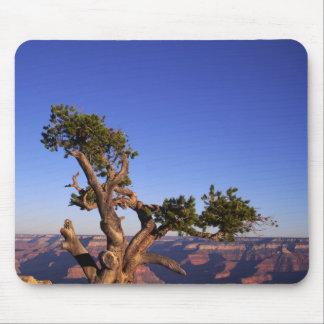 Grand Canyon, Arizona, USA Mousepad