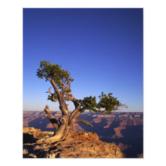 Grand Canyon, Arizona, USA Photo Print