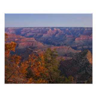 Grand Canyon at Sunrise Poster
