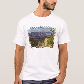 Grand Canyon from the south rim at sunset, 6 T-Shirt