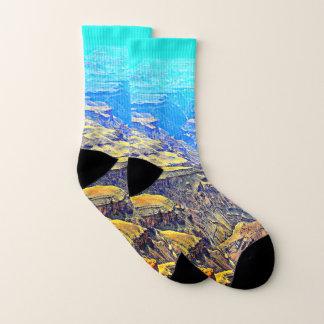 Grand Canyon Landscape Socks 1