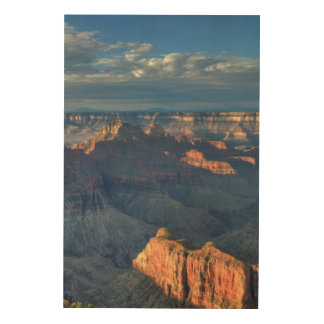 Grand Canyon National Park 2 Wood Print