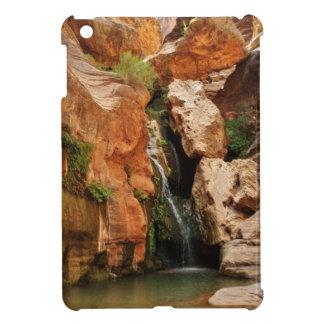 Grand Canyon National Park, Arizona Case For The iPad Mini
