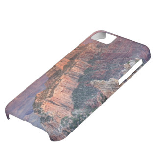 Grand Canyon National Park, Arizona iPhone 5C Case