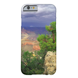 Grand Canyon National Park, Arizona, United 3 Barely There iPhone 6 Case