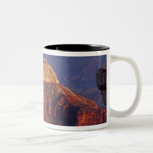 Grand Canyon National Park, Arizona, USA. Coffee Mugs