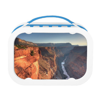 Grand Canyon National Park, USA Lunch Box